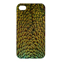 Colorful Iridescent Feather Bird Color Peacock Apple Iphone 4/4s Premium Hardshell Case