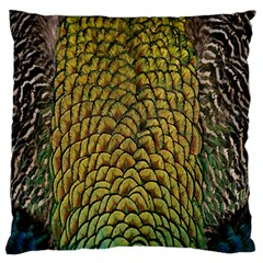 Colorful Iridescent Feather Bird Color Peacock Large Cushion Case (two Sides)