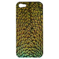 Colorful Iridescent Feather Bird Color Peacock Apple iPhone 5 Hardshell Case