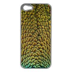 Colorful Iridescent Feather Bird Color Peacock Apple Iphone 5 Case (silver)