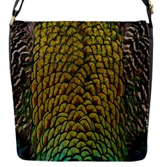 Colorful Iridescent Feather Bird Color Peacock Flap Messenger Bag (s)