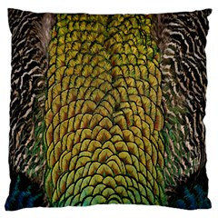 Colorful Iridescent Feather Bird Color Peacock Large Flano Cushion Case (one Side)