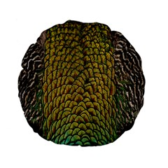 Colorful Iridescent Feather Bird Color Peacock Standard 15  Premium Flano Round Cushions