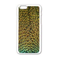Colorful Iridescent Feather Bird Color Peacock Apple Iphone 6/6s White Enamel Case