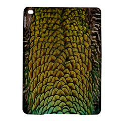 Colorful Iridescent Feather Bird Color Peacock iPad Air 2 Hardshell Cases