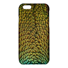 Colorful Iridescent Feather Bird Color Peacock iPhone 6/6S TPU Case