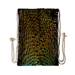 Colorful Iridescent Feather Bird Color Peacock Drawstring Bag (small)