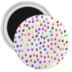 Paw Prints Background 3  Magnets