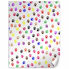 Paw Prints Background Canvas 12  X 16