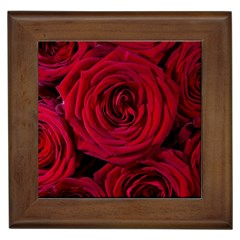Roses Flowers Red Forest Bloom Framed Tiles