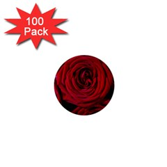 Roses Flowers Red Forest Bloom 1  Mini Buttons (100 Pack)