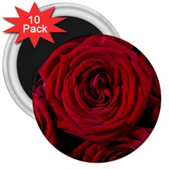 Roses Flowers Red Forest Bloom 3  Magnets (10 pack)