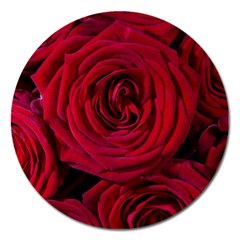 Roses Flowers Red Forest Bloom Magnet 5  (Round)