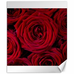 Roses Flowers Red Forest Bloom Canvas 8  x 10