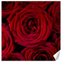 Roses Flowers Red Forest Bloom Canvas 12  x 12