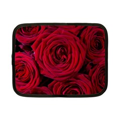 Roses Flowers Red Forest Bloom Netbook Case (small)