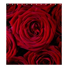 Roses Flowers Red Forest Bloom Shower Curtain 66  x 72  (Large)