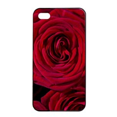Roses Flowers Red Forest Bloom Apple iPhone 4/4s Seamless Case (Black)