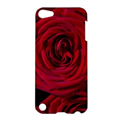 Roses Flowers Red Forest Bloom Apple iPod Touch 5 Hardshell Case