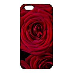 Roses Flowers Red Forest Bloom iPhone 6/6S TPU Case
