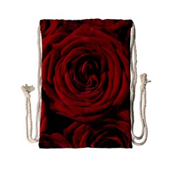 Roses Flowers Red Forest Bloom Drawstring Bag (Small)