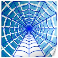Cobweb Network Points Lines Canvas 12  x 12