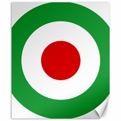 Iran Air Force Roundel Canvas 8  x 10