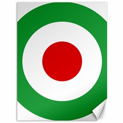 Iran Air Force Roundel Canvas 36  x 48