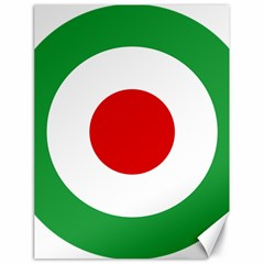 Iran Air Force Roundel Canvas 18  x 24
