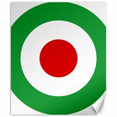 Iran Air Force Roundel Canvas 20  x 24
