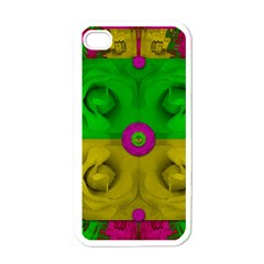 Roses Of Pure Love Apple iPhone 4 Case (White)