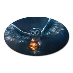 Owl And Fire Ball Oval Magnet