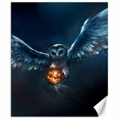 Owl And Fire Ball Canvas 20  X 24