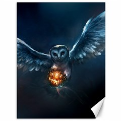 Owl And Fire Ball Canvas 36  X 48