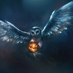 Owl And Fire Ball Magic Photo Cubes