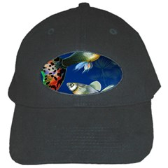 Marine Fishes Black Cap