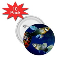 Marine Fishes 1 75  Buttons (10 Pack)
