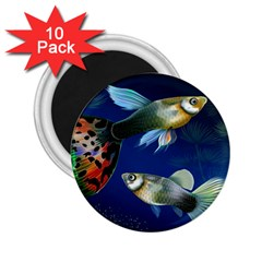 Marine Fishes 2 25  Magnets (10 Pack)