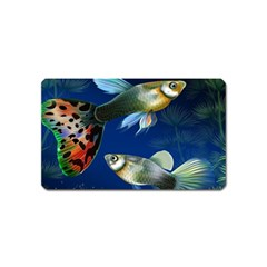 Marine Fishes Magnet (name Card)