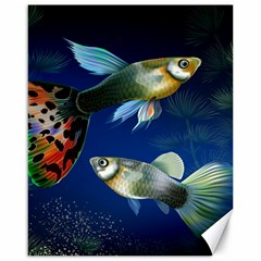 Marine Fishes Canvas 16  X 20