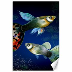 Marine Fishes Canvas 24  X 36