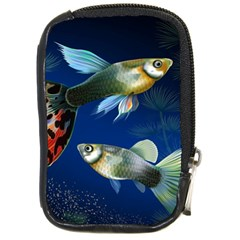 Marine Fishes Compact Camera Cases