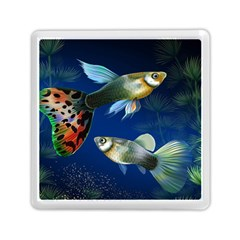 Marine Fishes Memory Card Reader (square)