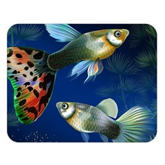 Marine Fishes Double Sided Flano Blanket (large)
