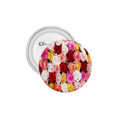 Rose Color Beautiful Flowers 1.75  Buttons
