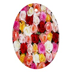 Rose Color Beautiful Flowers Ornament (oval)