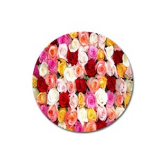 Rose Color Beautiful Flowers Magnet 3  (Round)