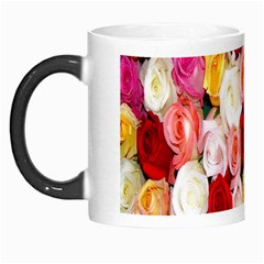 Rose Color Beautiful Flowers Morph Mugs