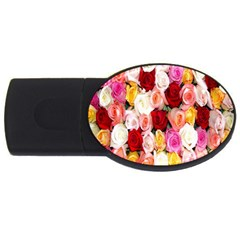 Rose Color Beautiful Flowers Usb Flash Drive Oval (4 Gb)
