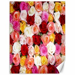 Rose Color Beautiful Flowers Canvas 12  x 16
